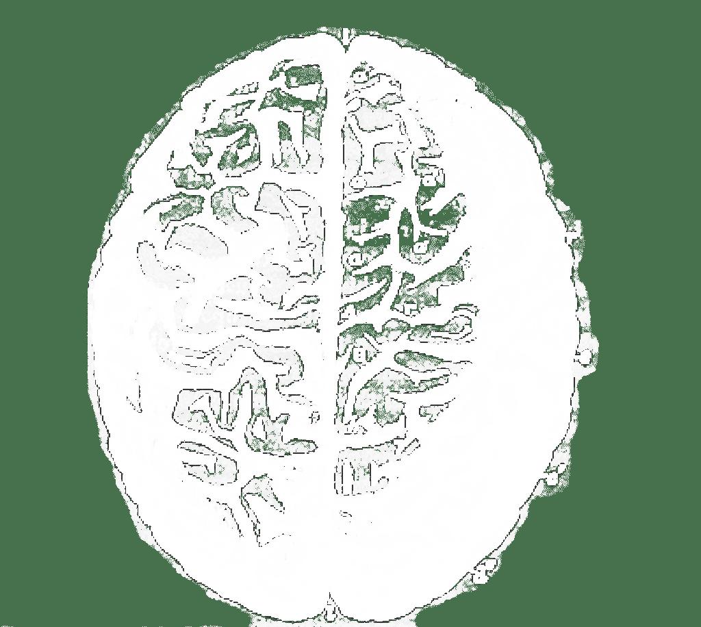 Diagram of Brain Representing Technology